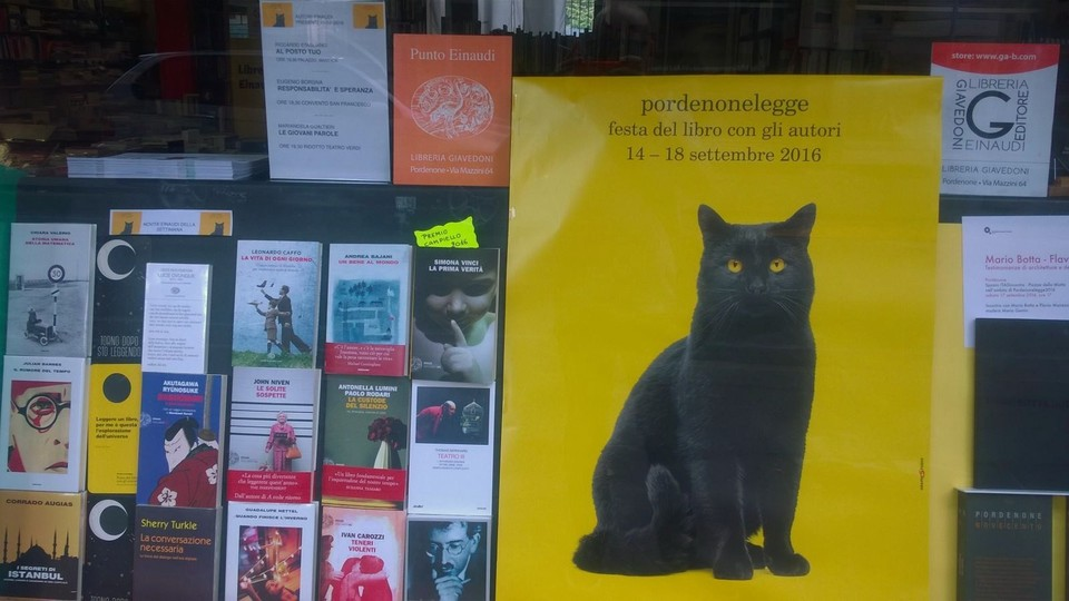 Proust Il Gatto Nero Della Valcellina è Lui La Vera Star Onnipresente