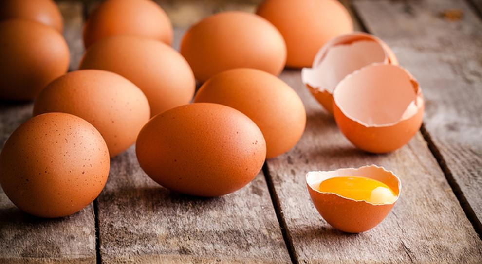 la canzone sulla dieta delle uova