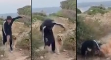 Gianni Morandi, brutta caduta mentre fa jogging con il cane IL VIDEO