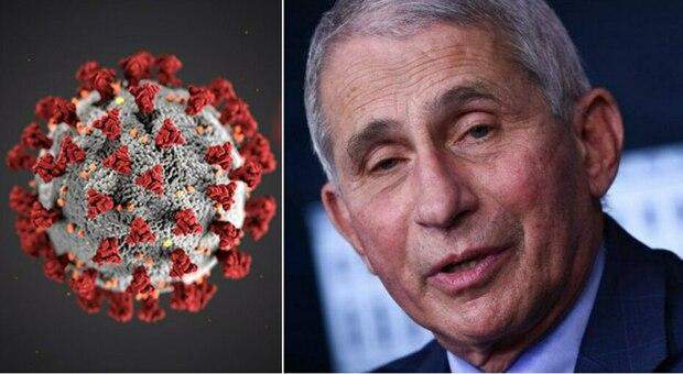 Covid, Fauci: «Non sono convinto dell'origine naturale del virus»