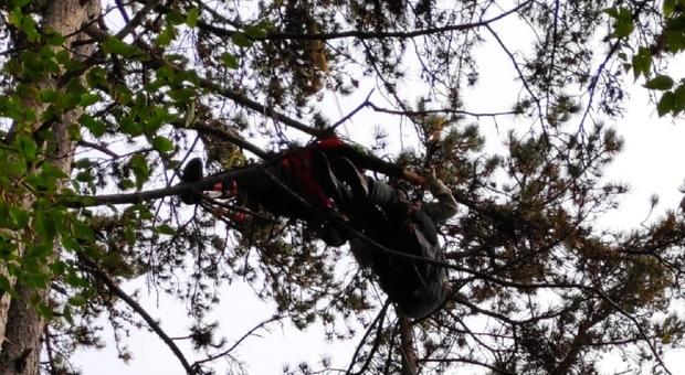 La donna rimasta incagliata tra gli alberi