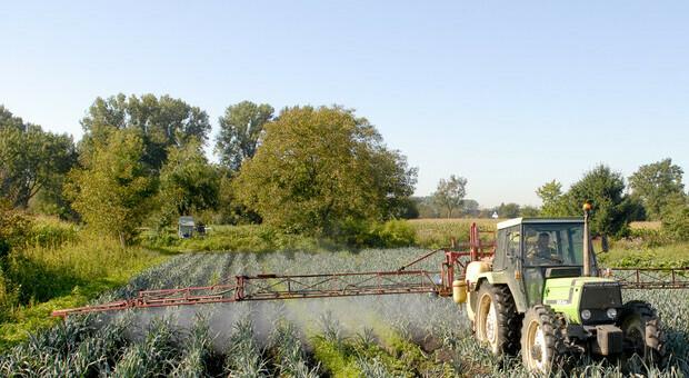 Lombardia, dalla regione 48 mln a imprese agricole: firmato il decreto regionale sulla misura 4.1 del Piano di sviluppo rurale