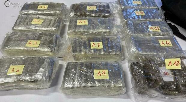 Panetti di hashish trovati nel bosco di Colfosco