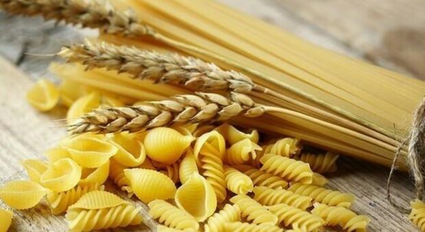 Auguri Artusi, il compleanno del papà del cibo italiano si festeggia con record dell'export