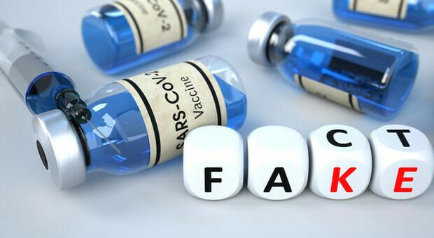 Vaccini, boom di fake news con 149mila contenuti web in 7 mesi: il report