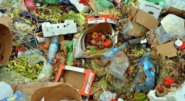 Cina, avviata conferenza internazionale su spreco alimentare: vi partecipano 49 Paesi