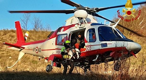 Il salvataggio del cane sul Monte Bernadia