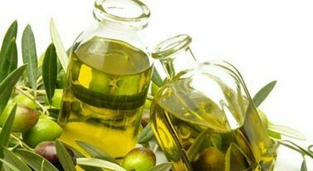 La qualità dell'olio extravergine si scopre alla Rinascente. Accordo con Unaprol, quattro settimane tra lezioni e assaggi