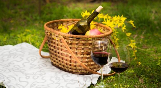 Il Parco Gambrinus propone picnic a contatto con la natura Foto di belikt da Pixabay