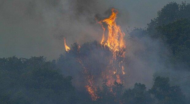 Sardegna devastata dagli incendi, 4 Canadair da Francia e Grecia. Animali morti e ripetitori bruciati