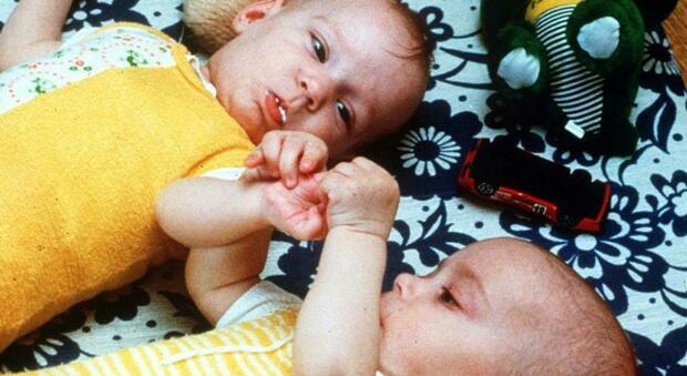 «Colorante per pappe per neonati e caramelle per bambini non è sicuro», Efsa: rischi dal biossido di titanio