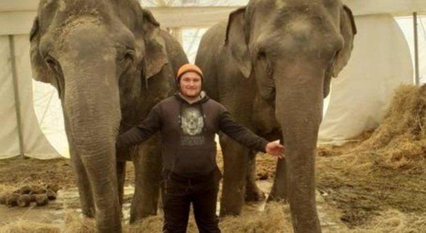 I due elefanti del circo. (Immag diffusa da Ansa)
