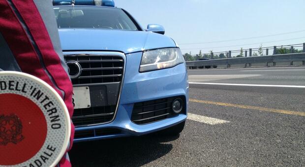 Contrabbando di gasolio, fermati in A23 due Tir con 30 tonnellate: 20.000 euro di multa