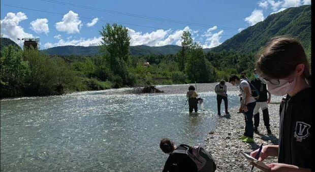 Studenti-ricercatori promuovono le acque feltrine