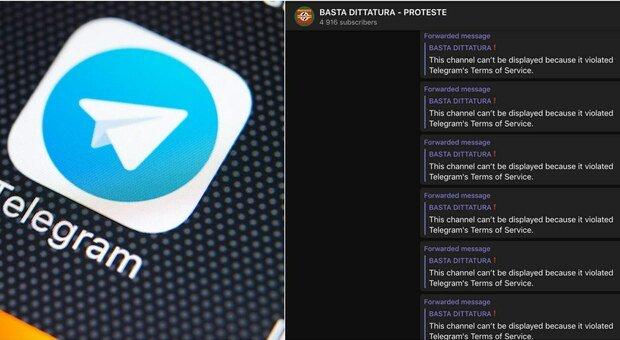 Telegram oscura la chat no vax «Basta dittatura»: ha violato i Termini di Servizio
