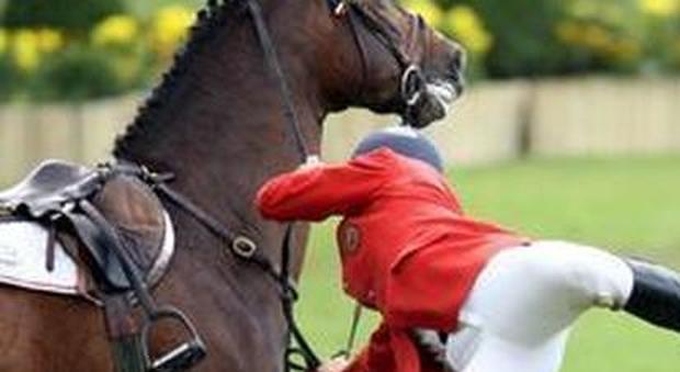 Calpestata dal cavallo in maneggio ragazzina di 12 anni for Quanto costa mantenere un cavallo