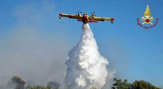 Incendi in Calabria, 2 morti sull'Aspromonte. Inferno dal Mediterraneo all'Amazzonia: cosa sta accadendo