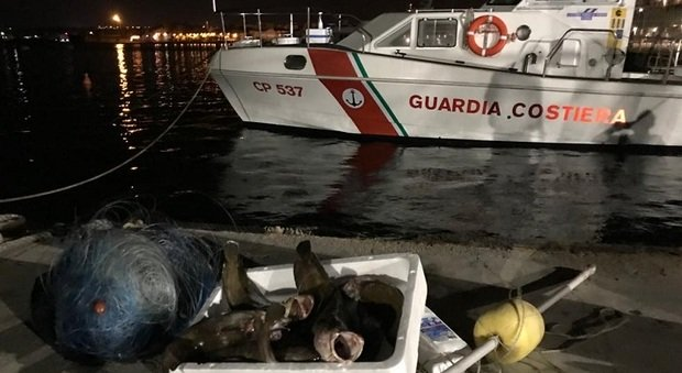 Pesca abusiva: sequestri e controlli, sanzioni per 25mila euro