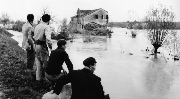 Polesine, l'alluvione del 1951