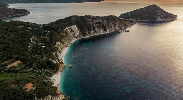 Pernice rossa, all'Isola d'Elba popolazione geneticamente più integra d'Italia