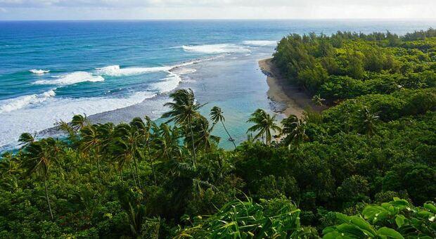 Alle Hawaii boom di turisti, in molti senza mascherina