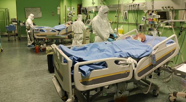 L'ospedale San Luca di Trecenta