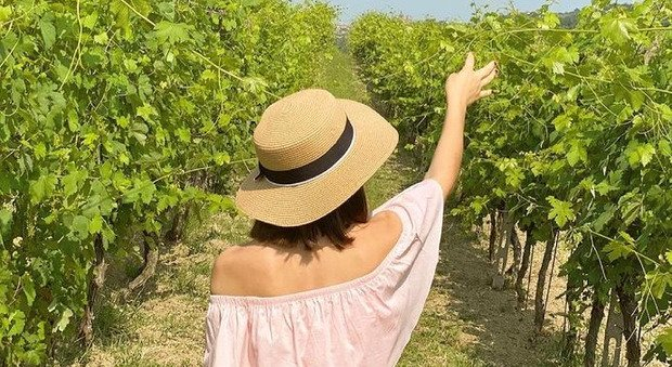Toscana, torna Calici di stelle: dal 31 luglio al 15 agosto viaggi di gusto nelle cantine