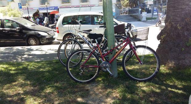 Incentivi per le biciclette primo s al ddl alla camera for Si svolgono alla camera