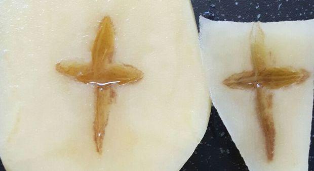 Roma, nonna catechista prepara il pranzo e scopre il miracolo: nella patata le stimmate, croce cristiana