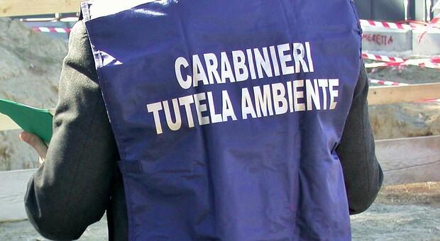 """Maxi traffico di rifiuti tessili nei capannoni veneti: 19 indagati, """"smaltite"""" 1.000 tonnellate in 3 mesi"""