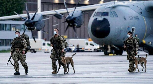 Kabul, il giallo dei cani soldato abbandonati. Animalisti accusano, ira Pentagono: «È falso»