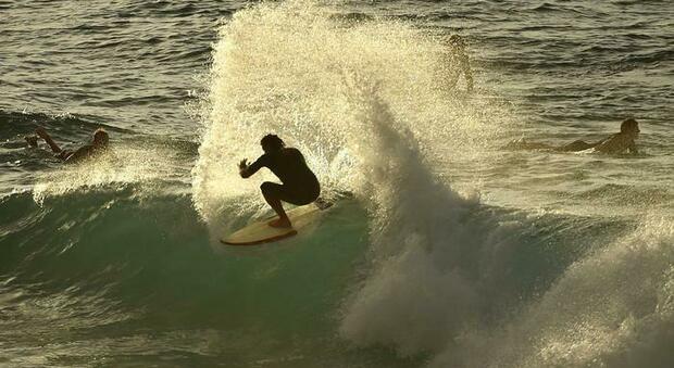 Australia, surfista muore dopo essere stato attaccato da uno squalo: aveva 30 anni