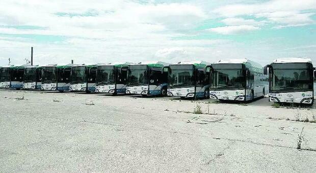 Autobus Actv nuovi di zecca fermi da settimane nelle Terre Perse del Lido