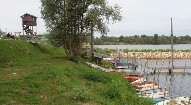 L'area golenale del Balotin nel delta del Po