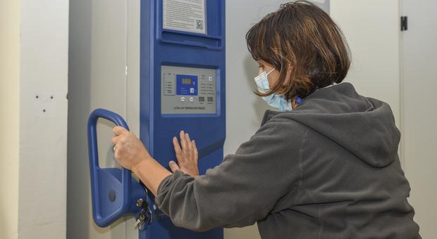 Le celle frigorifere dove vengono custoditi i vaccini anti Covid
