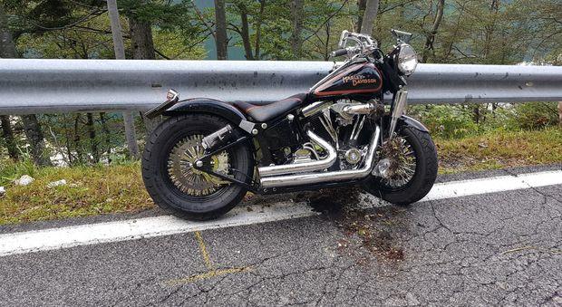 Raduno Harley Davidson  Slovenia