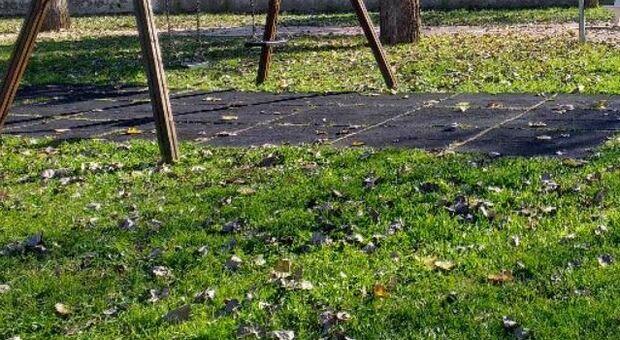 Due ragazze di 15 anni drogate e stuprate nel parco da 4 uomini conosciuti su Snapchat
