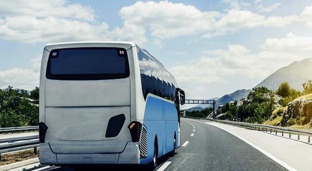 Agenzia abusiva organizzava viaggi turistici, i vigili bloccano bus in partenza per Belluno