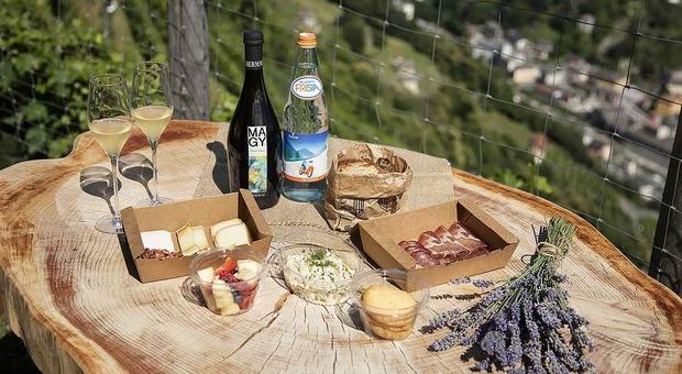 sei escursioni con formula picnic nelle Alpi lombarde