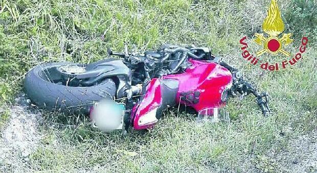 La cerva sbuca all'improvviso sulla strada: violento impatto con una moto, centauro miracolato