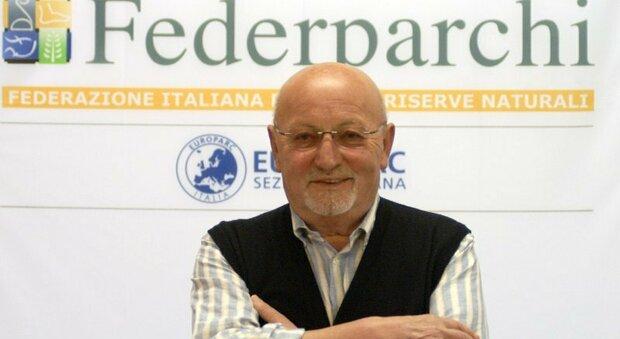 Benedetto Fiori