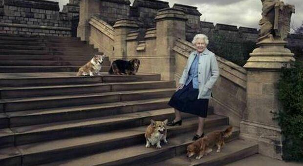 Regina Elisabetta, è morto Fergus: il cucciolo adottato come distrazione durante la malattia di Filippo