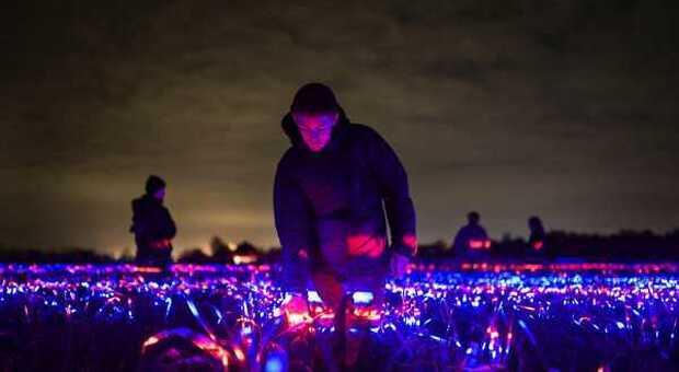 Olanda: un istallazione luminosa accende di colori un campo coltivato