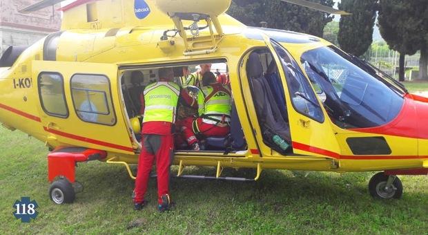L'elicottero del Suem 118 è intervenuto all'investimento di Soranzen di Cesiomaggiore