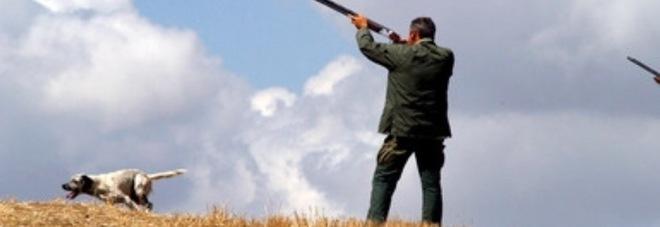 Un cacciatore, archivio