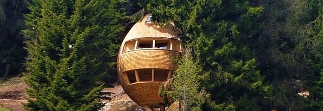Un weekend da fiaba in montagna dove nelle casette sugli for Case in legno sugli alberi