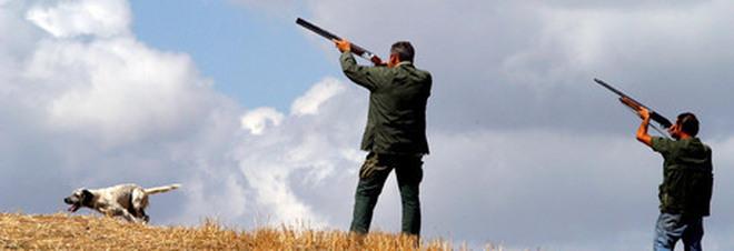 Armi illegali e uccelli di specie protette abbattuti: stangata sui cacciatori