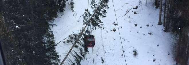 Maltempo albero su cabinovia 200 sciatori bloccati for Cabine sulla sponda nord