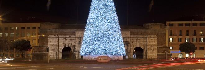 Albero Di Natale Grande.Torna Il Grande Albero Di Natale Bauli A Verona Acceso L Abete Alto