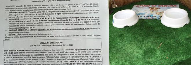 Mette le ciotole per far bere i cani davanti al negozio: ora rischia una multa di 500 euro